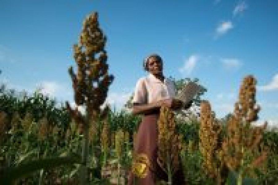 La campesina modelo que lidera el cambio en su comunidad, y no solo en la agricultura